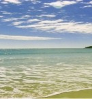 walk the lovely noosa beaches